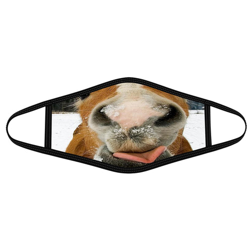 Dr Horse Funny Cloth Mask 3