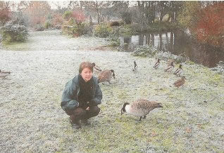 Time to be feeding our feathered friends