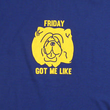 Load image into Gallery viewer, Friday Got Me Guys Tee