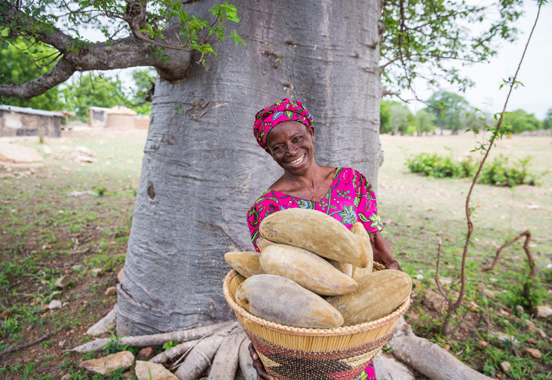 Aduna Baobab Producer, Upper East Ghana