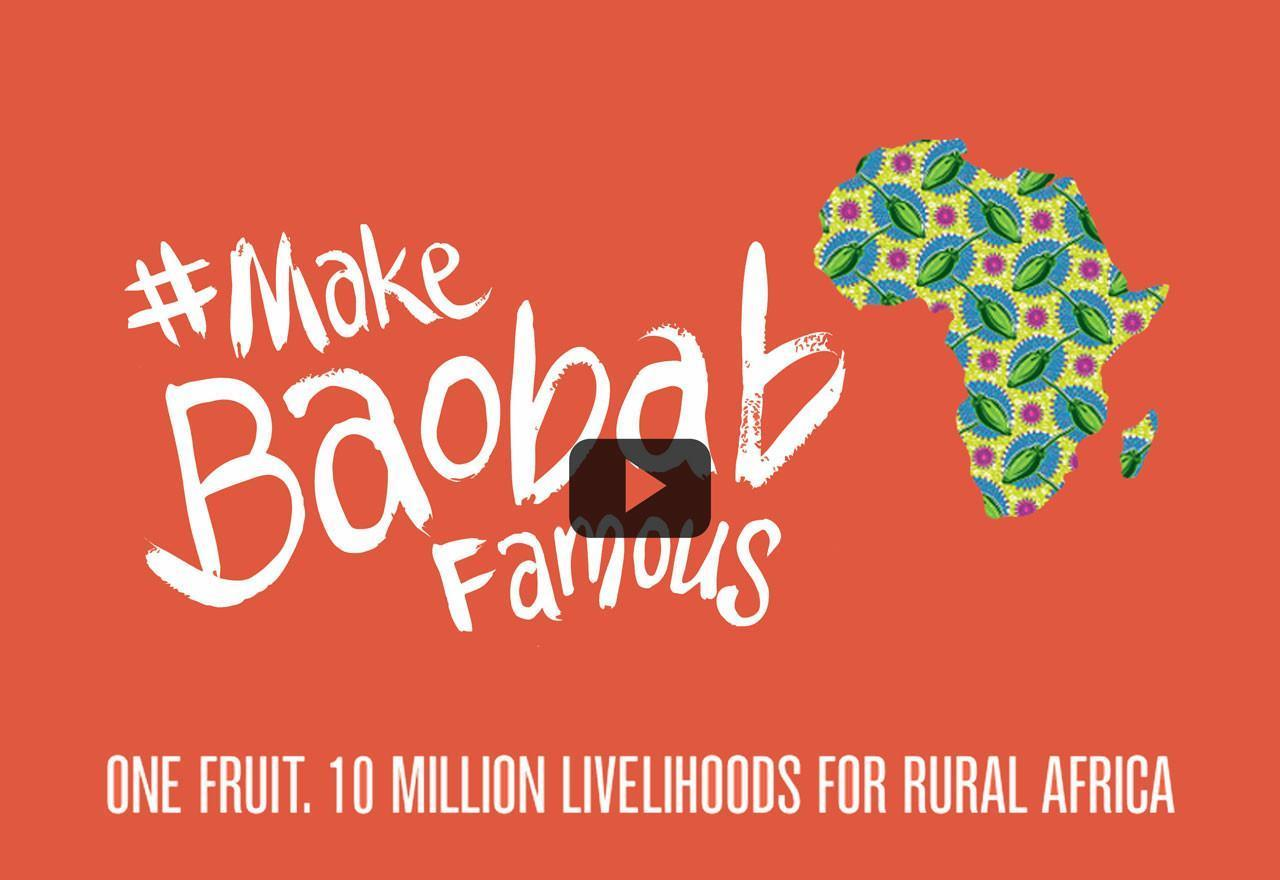 Watch: The inspiring possibility of baobab.