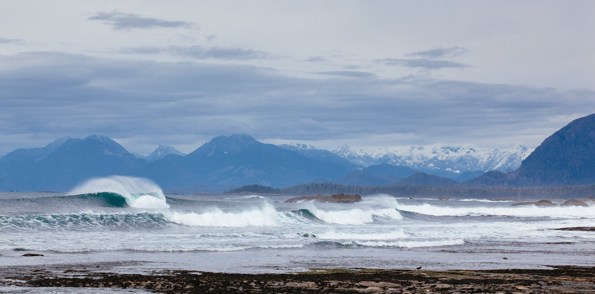 Surfers on Vancouver Island Beach