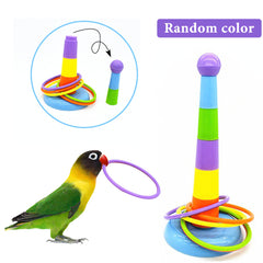 Bird Colorful Rings Training Toy