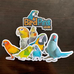 Bird Sticker Set | Series 1