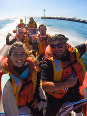 The Adrenalised Diving team are only too keen to share the beauty of the ocean and its most playful mammals with you as well as the beauty of the Cape Town Atlantic Coastline.