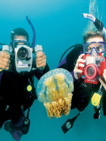 The PADI Digital Underwater Photographer course offered by Adrenalised Diving in Cape Town gets you going quickly, whether you use a point-and-shoot camera or a sophisticated DSLR like the pros.