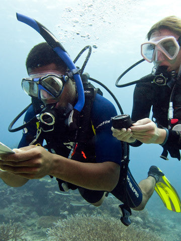 The PADI Underwater Navigator course offered by Adrenalised Diving in Cape Town fine-tunes your observation skills and teaches you to more accurately use your compass underwater.