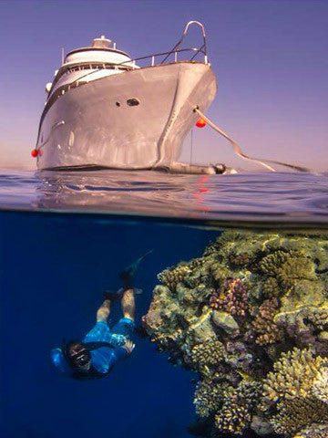 Red Sea - Northern Wrecks and Reefs 2016