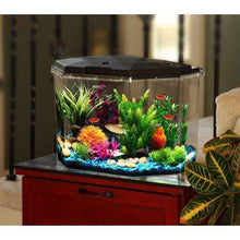 Load image into Gallery viewer, 6.5-Gal Semi-Hex Aquarium Kit Aqua Culture with LED Lighting -