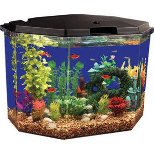 6.5-Gal Semi-Hex Aquarium Kit Aqua Culture with LED Lighting -