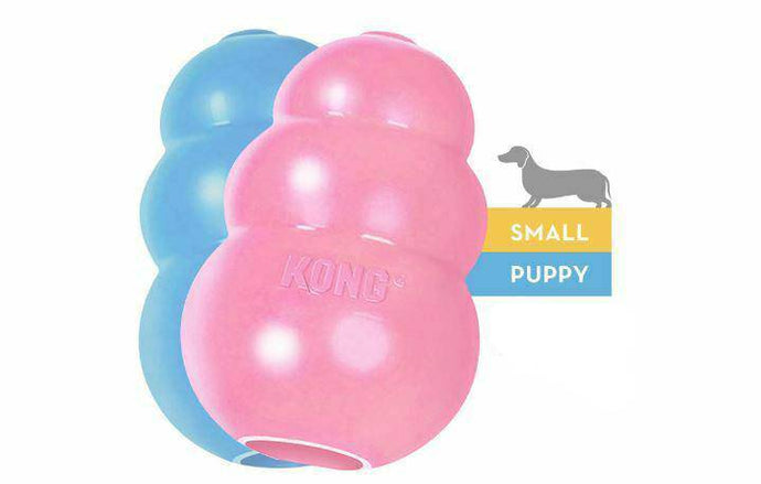 KONG  Puppy dog Toy  Natural Teething Rubber Chase and Fetch play -