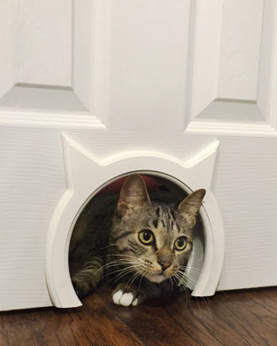The Kitty Pass Interior Cat Door Hidden Litter Box Pet Door for Cats up to 21 lb -