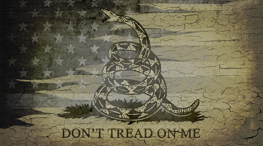 Don't Tread on Me | Tribute to the Gadsden Flag