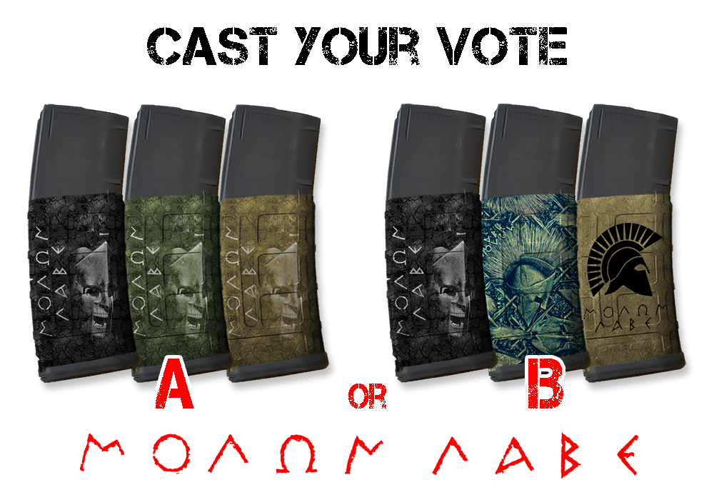 Cast Your Vote for Molon Labe Mag Skins