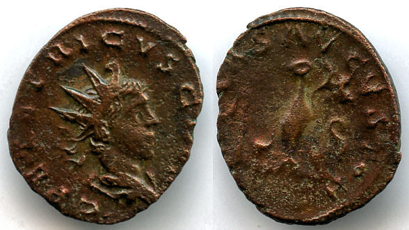 Bronze antoninianus of Tetricus II as Caesar (270-273 AD), pontificial implements, Gallo-Roman Empire