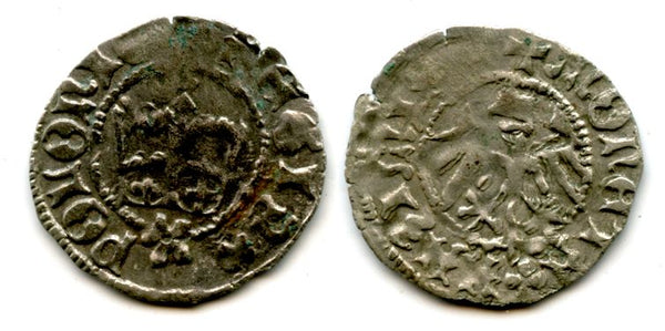 Scarce silver 1/2 grosso of Casimir Jagiellon (1446-1492), Poland