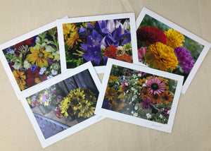 Vineyard Landscapes Cards
