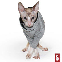 Load image into Gallery viewer, Light gray hoodie with raglan sleeves | Clothing for Rex and Sphynx cats
