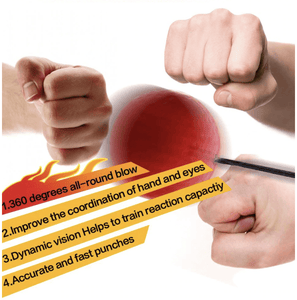 Professional Boxing Reflex Ball - Dechappy