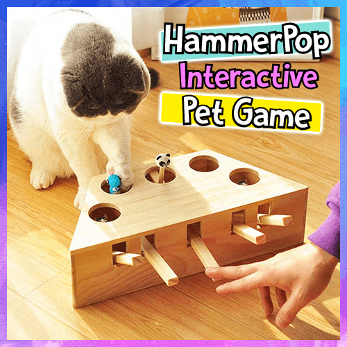 HammerPop Interactive Pet Game - Dechappy