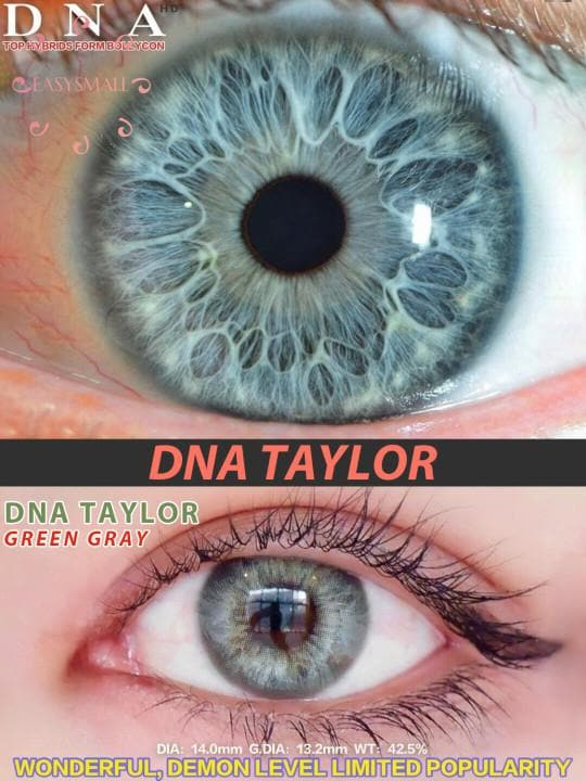 Taylor Green Gray Colored Contact Lenses