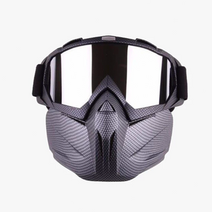Winter Sports Ski Mask - Double-Layer Lens & Breathable