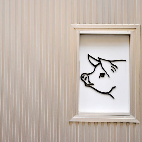 barn wall with sketch of pig in window