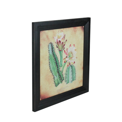 "12""  Black and Green Cactus and other Desert Plants Surrounded by Black Photo Frame"