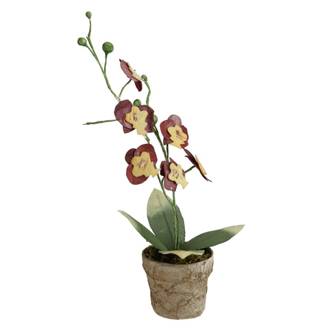 "14"" Crimson Red and Banana Yellow Decorative Orchids in Pot"