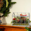 "9"" Red and Green Cardinal Boxwood Artificial Christmas Greenhouse Arrangement"
