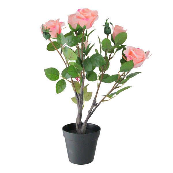 "19"" Pink and Black Blooming Ecuador Potted Artificial  Rose Shrub"