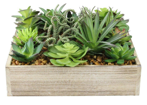 "10"" Green and Brown Decorative Artificial Succulent Plant Arrangement in a Garden Box"