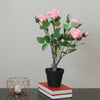 "19"" Pink and Green Floral Ecuador Potted Artificial Rose Shrub"