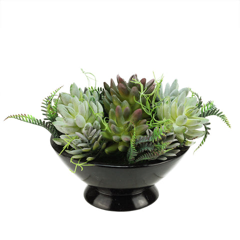 "10"" Green and Black Potted Artificial Mixed Succulent Plant"