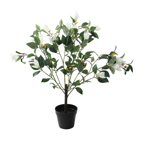 "32.5"" Artificial Potted White Lily Magnolia Flowering Tree"