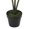 "45.75"" Green and Black Artificial Croton Tree with Variegated Leaves"