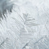 "24"" White Crystal Spruce Artificial Christmas Wreath - Unlit"