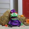 "23"" Purple and Green Witch Unisex Child Trick or Treat Halloween Bag Costume Accessory"