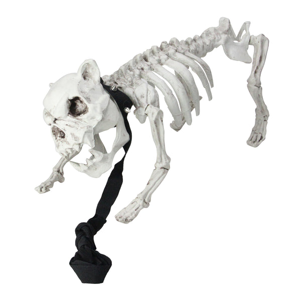 "16"" Dog Skeleton on Leash Indoor and Outdoor Halloween Decoration"