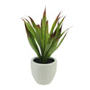 "13.5"" Potted Artificial Green and Red Agave Succulent Plant"