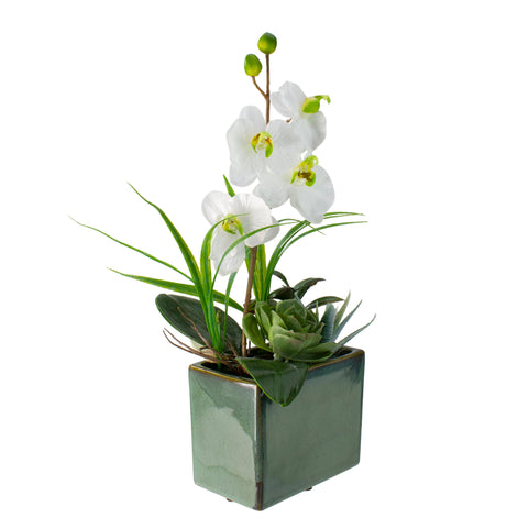 "12"" Potted Artificial Orchid and Succulents Flower Arrangement"
