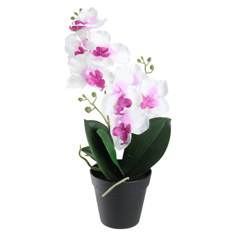 "16.5"" White and Green Potted Phalaenopsis Orchid Artificial Flower Arrangement"