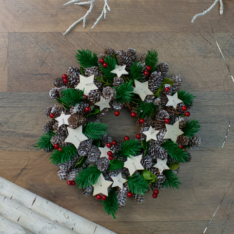 "10"" Pine Cone with Berries and Stars Artificial Christmas Wreath - Unlit"