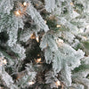 9' Pre-Lit Full Frosted Butte Fir Artificial Christmas Tree - Clear Lights