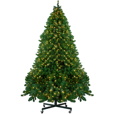 12' Pre-Lit Full Olympia Pine Artificial Christmas Tree - Warm White Lights