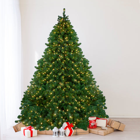 9' Pre-Lit Full Olympia Pine Artificial Christmas Tree - Warm White Lights