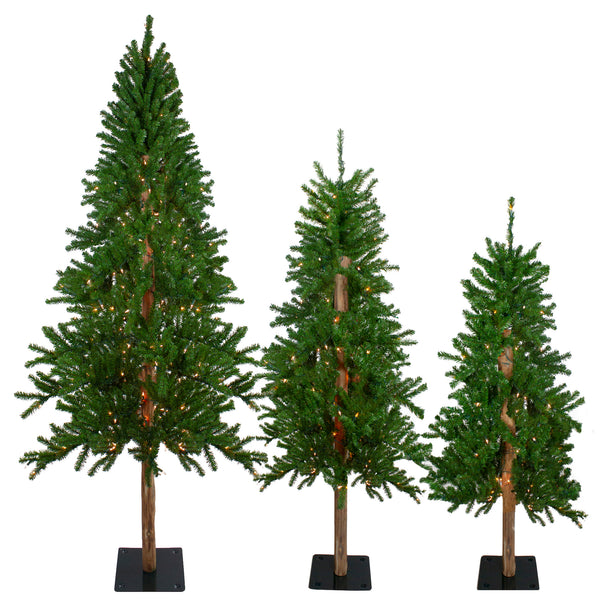 Set of 3 Pre-Lit Slim Alpine Artificial Christmas Trees 6' - Clear Lights
