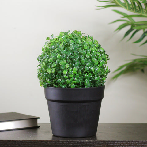 "10.5"" Potted Artificial Two Tone Green Boxwood Spring Garden Plant"