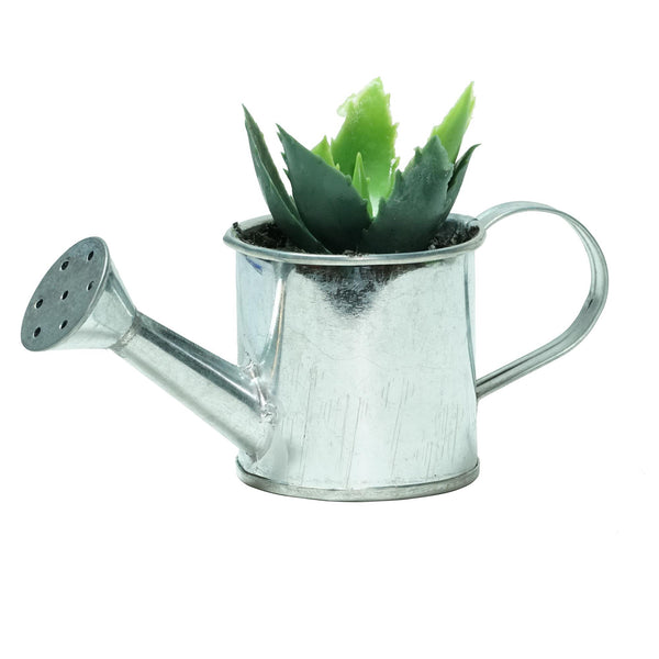 "6"" Silver and Green Two Tone Tropical Mini Artificial Spikey Succulent in Water Can"