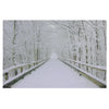 "Large Fiber Optic Lighted Winter Wooden Bridge Canvas Wall Art 23.5"" x 15.5"""